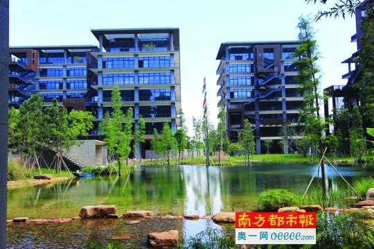 泰华梧桐岛位于航空新城片区,为深圳首个主打生态理念的园区项目